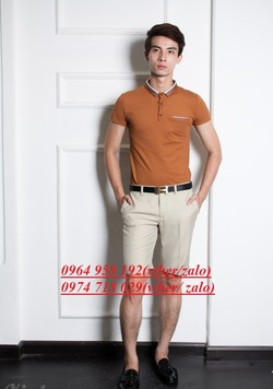 Bán buôn bán lẻ quần ngố nam,áo phông polo,tommy,..haàng vnxxk