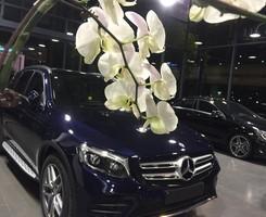 Mercedes GLC300 Mới 100%, Ảnh số 1