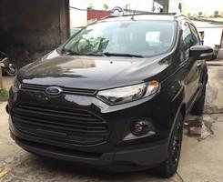 Ford Ecosport bản đặc biệt, Ảnh số 1