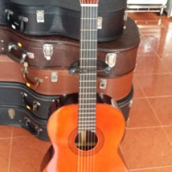 Guitar Cervantes ML 300 Nhật