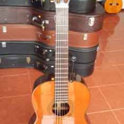 Guitar Morris MC 115 Korea