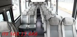County Đồng Vàng 29 Chỗ Nhập Khẩu CKD Giá Cực LIÊN HỆ.....
