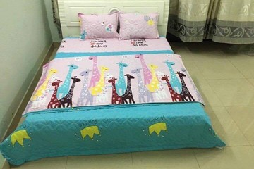Set Cotton Poly trần