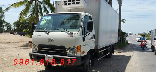 Xe tải Đồng Vàng 7 tấn HD700 lắp ráp 3 cục Hyundai Hàn Quốc đóng thùng ĐÔNG LẠNH, Ảnh số 1