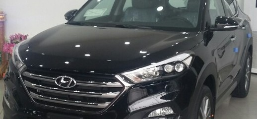 Hyundai Santa Fe 2.4 máy xăng/2.2 máy dầu, bản đặc biệt, liên hệ để nhận giá tốt nhất., Ảnh số 1