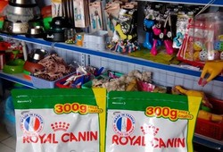 Royal Canin ~Mini Junior.