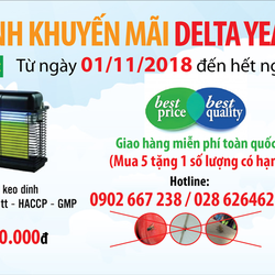Delta Year End Promotion 2018