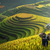 Sapa-Art-Travel